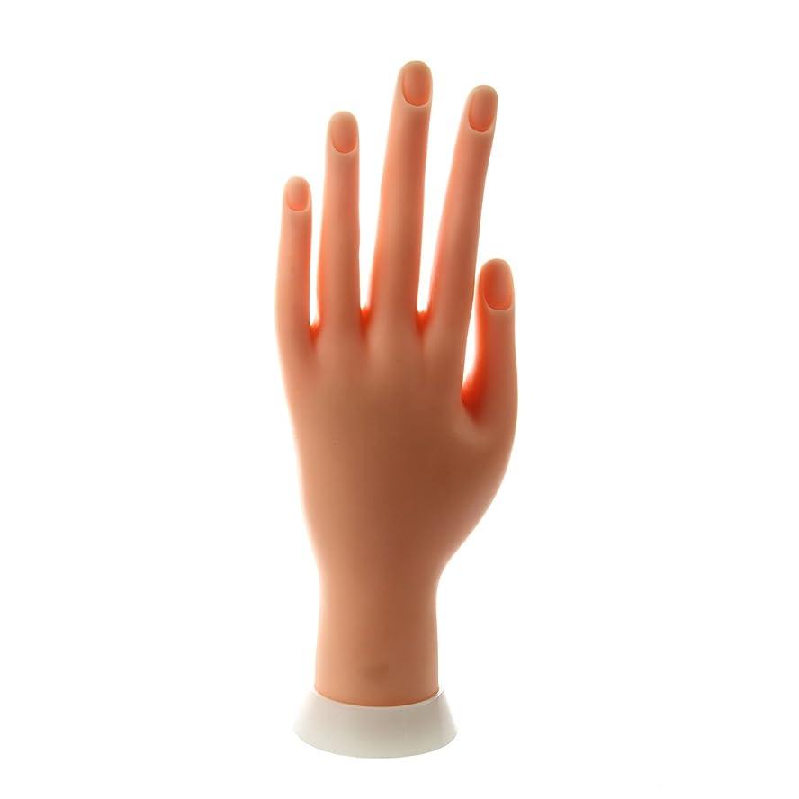 ビーム豊かにする感じるSODIAL(R) ネイルアートの練習のためのモデル左手