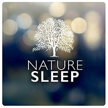 Nature: Sleep