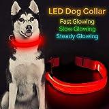 Iseen Collar de perro LED recargable USB material de cincha (L, rojo)