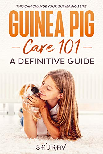 Guinea Pig Care 101: A Definitive Guide