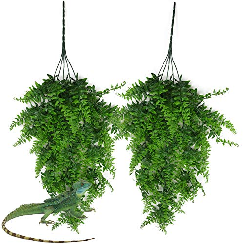 kathson Reptile Plants Hanging Climbing Terrarium Plantwith Suction Cup for Bearded Dragons Lizards Geckos Snake Pets Hermit Crab and Tank Habitat Decorations(2 PCS)