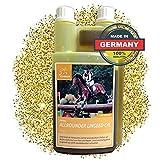 EMMA  Aceite de linaza para Caballos pienso para Caballos complemento alimenticio I ácidos grasos Omega 3-6 en Aceite I prensado en frío I vitaminas A, D y E I para Pelo Brillante y energía 1 litro