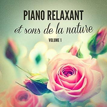 Piano relaxant et sons de la nature