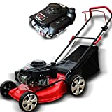 QILIN 18inch 5.5HP 4-Stroke Gasoline Mower Lawn Mower,Portable Collapsible/for Large Villas, Parks, Sports Fields