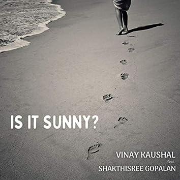 Is It Sunny? (feat. Shakthisree Gopalan)