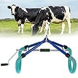 Vacchetta portatile in acciaio inossidabile in piedi, supporto per vacca, febbre per disto...