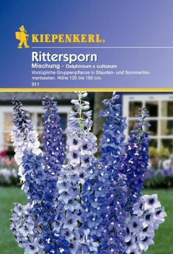Delphinium Rittersporn mehrjährige...