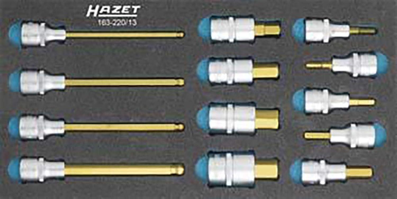 HAZET 163-220 13 Schraubendreher-Einsatz-Satz B005ONP3BY | Hervorragende Eigenschaften