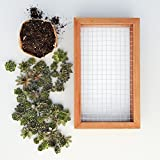 "Succulent Gardens Medium Living Picture Planter DIY Kit, 6"" x 12"" Frame, Multicolor"