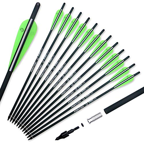 Pointdo 20inch Carbon Crossbow Bolts Crossbow Hunting Arrows with 4' Vanes and Replaced Arrowhead/Tip (12 Pack) (Green White)