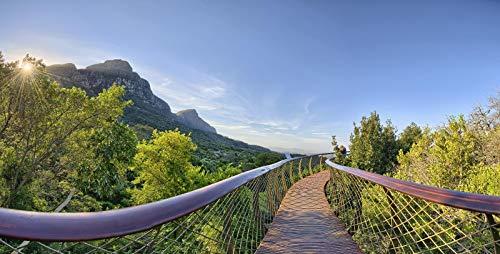 Jardín Botánico Nacional Kirstenbosch 1000 regalos de romp