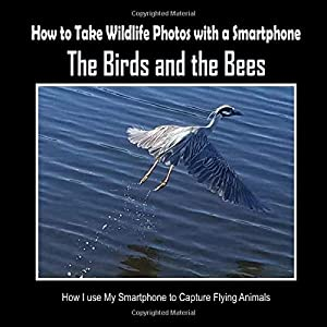 The Birds and the Bees: How I Use My Smartphone to Capture Flying Animals (How to Take Wildlife Photos with a Smartphone)