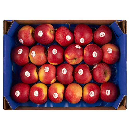 Apfel Gala SK 73+ 3 kg