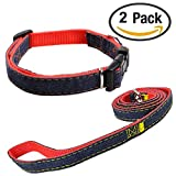 Newtensina Moda Perro Collar y Correa Set Tela de Mezclilla Perrito Collar con Correa para Perro - Red - M