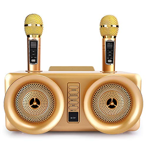 Bewinner1 Karaoke-Soundmixer, Karaoke-Soundsysteme der Familie Doppeltes drahtloses dynamisches Handmikrofon, Externe Stereo-Surround-Soundkarten für Mobiltelefone Tablets PC-Laptops Desktop(Gold)