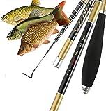 laselectionfishing Canne à pêche Coup Chinoise pêche Carpe pâte télescopique Carbone 4m (3.9)