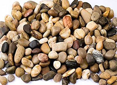 River Rocks, Pebbles, Outdoor Decorative Stones, Natural Polished Gravel, For Aquariums, Landscaping, Vase Fillers, Succulent, Tillandsia, Cactus pot, Terrarium, Bamboo Plants, 2 LB. (32-Oz).