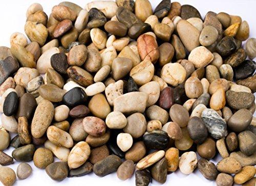 2 Pounds River Rocks, Pebbles, Natural Gravel, for Aquariums, Terrarium Plants, (32-Oz).