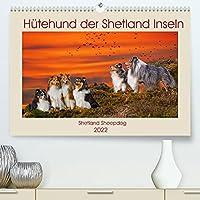 Huetehund der Shetland Inseln - Shetland Sheepdog (Premium, hochwertiger DIN A2 Wandkalender 2022, Kunstdruck in Hochglanz): In 13 wunderschoenen Fotos stellt die Tierfotografin Sigrid Starick diese liebenswerte Hunderasse vor. (Monatskalender, 14 Seiten )