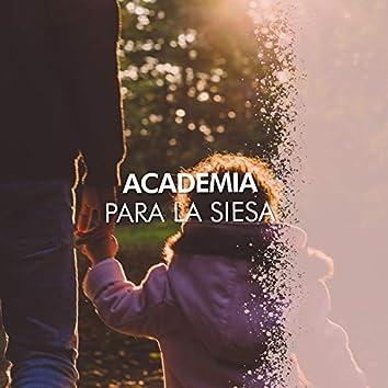 Academia Dulce para la Siesta