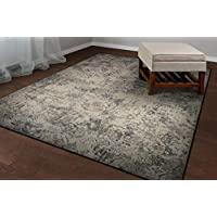 Couristan 2 Inch x 3'7 Inch Antique Lace Area Rug