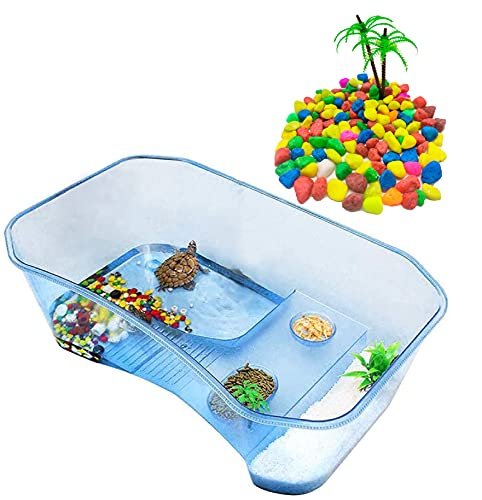 Tortuguera Grande - Acuario para Tortugas con Palmera y Piedras de Colores, Resistente y Ligera – Terrario de Tortugas de 60 y 40 cm (60 CM)