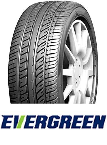Evergreen Pare-Soleil 62 XL – 245/35/R19 93Y – C/B/72 – Pneu d'été