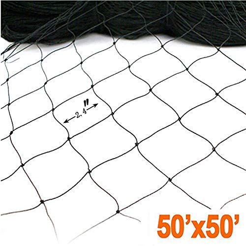 Helixiu 50' X 50' Net Netting for Bird Poultry Aviary Game Pens New 2.4' Square Mesh Size, Bird Net Garden Netting to Protect Fruit Trees, Bushes & Vegetables from Hungry Birds, Chickens & Poultry
