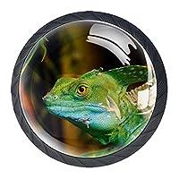 引き出しハンドルドレッサーノブ引き出しノブキャビネットノブ引き出しプルオフィスバスルームキッチンデコレーション用(4個)緑色の爬虫類トカゲ