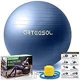 arteesol Gymnastikball, Balance Ball 45cm/55cm/65cm/75cm Yoga Ball mit Pumpe Anti-Burst Fitness Balance Ball für Core Strength (Dunkelblau-Scrub, 65cm)