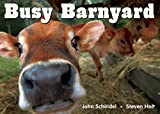 Busy Barnyard (A Busy Book)
