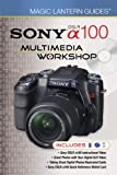 Sony DSLR A100 Multimedia Workshop (Magic Lantern Guides)