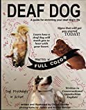 Deaf Dog: A guide for enriching your deaf dog's life