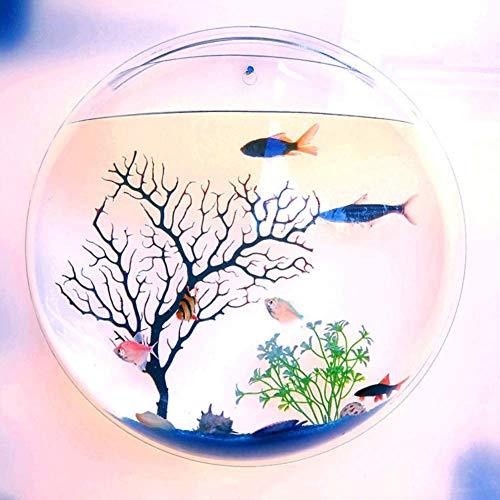 MUMUCW Hanging Montage Mural de Cuvette de Poissons aquaponique réservoir Aquariums Usine de Poisson Bubble Beta Poisson Planteur aquaponique Accueil Fleur Tank Décoration Cache-Pot - Effacer
