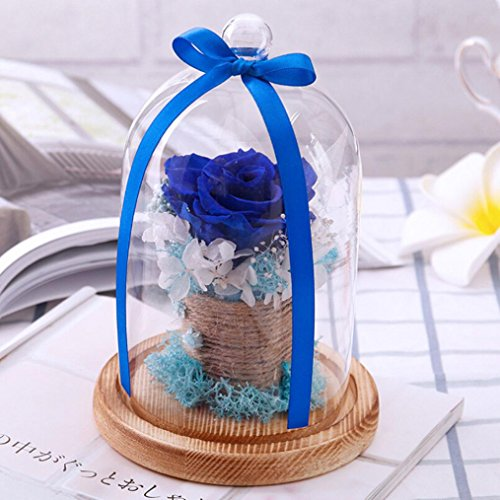 Cloche en verre avec rose et fleurs éternelles IGEMY - Cadeau romantique pour un anniversaire ou la Saint-Valentin , bleu