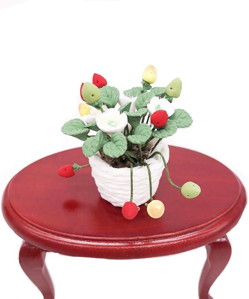 Hiawbon 1Pcs 1:12 Dollhouse Miniature Flower Plant Pot Miniature Exquisite Green Plant Ornament Mini Doll House Accessories for Dollhouse DIY,C