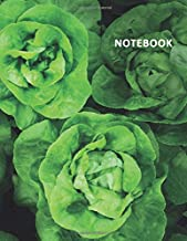 College Ruled Notebook: Lettuce photography Petite Student Composition Book Daily Journal Diary Notepad for researching self sufficient living on 5 acres