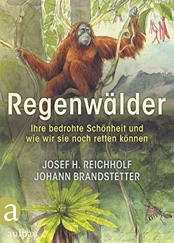 Regenwälder: Ihre bedrohte Schönheit und wie wir sie noch retten können (German Edition)