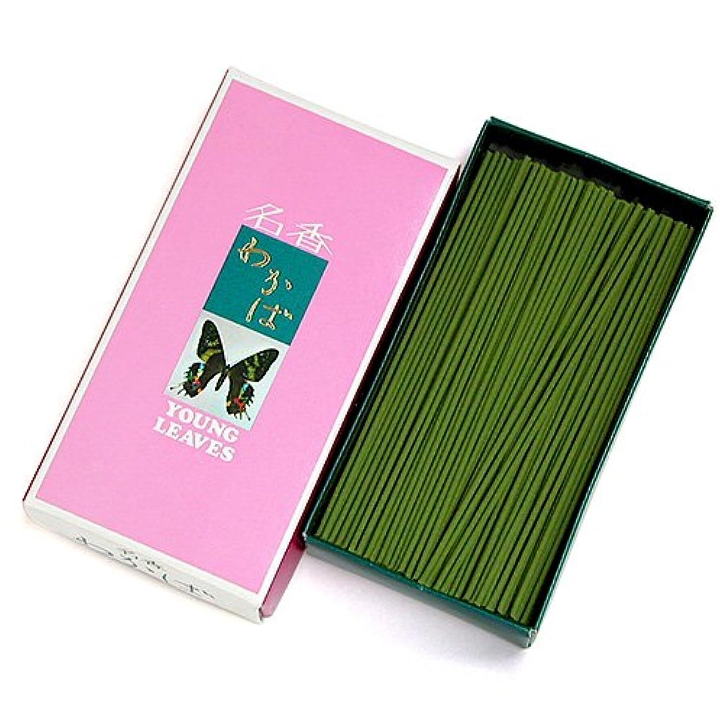 憂鬱な人里離れたを通して家庭用線香 わかば(箱寸法16×8.5×3.5cm)◆香木と調和した香水の香りのお線香(大発)