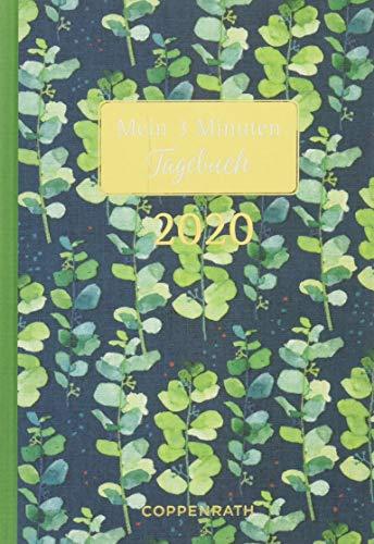 Mein 3 Minuten Tagebuch 2020 (Grüne Rispen) (Jahreskalender)