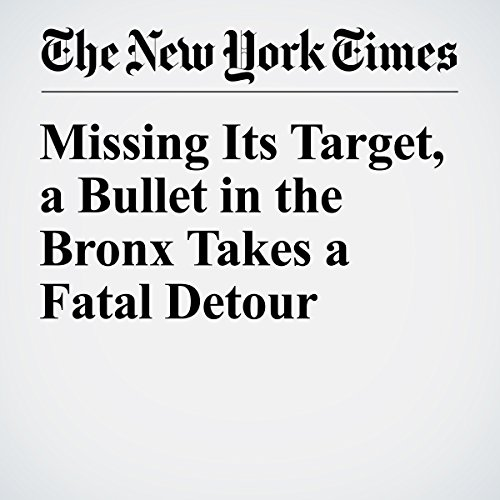 Missing Its Target, a Bullet in the Bronx Takes a Fatal Detour copertina