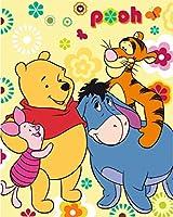 6966 ブランケット クマのプーさん Winnie the Pooh フリース 120x150 cm [並行輸入品]