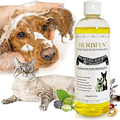 Dog Shampoo & Conditioner for Smelly Dogs (UK COMPANY) Sensitive Puppy Skin Natural Organic Professional Dog Grooming Kit Dandruff Pet Cat & Dog Shampoo For Itchy Skin Anti Bacterial Relief Antifungal