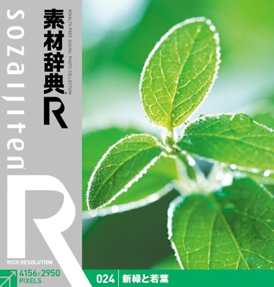 信号優越起きろ素材辞典[R(アール)] 024 新緑と若葉