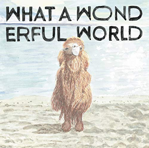[Album]What A Wonderful World – 堀込泰行[FLAC + MP3]