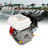 Motor de gasolina, motor de pie, motor de cartón, motor de 4 tiempos, 7,5 PS, 5,1 kW