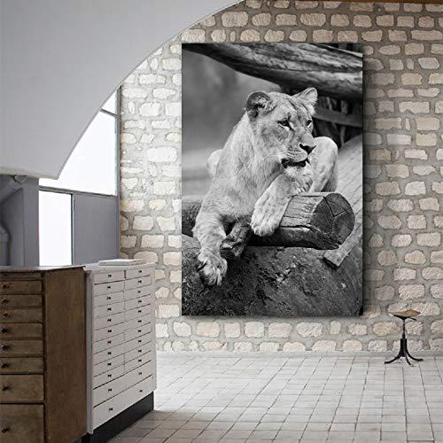 ganlanshu Rahmenlose Malerei Kunst Löwe Tierbild Leinwand Malerei Wandbild Wohnzimmer Schlafzimmer Moderne dekorative MalereiZGQ6051 40X60cm