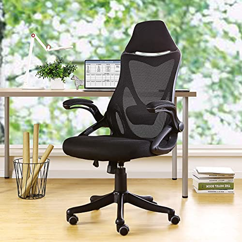 Home Office Ergonomic Mesh Office Chair Computer Chair with Flip-up Arms Adjustable Lumbar Support Desk Chair (Black)