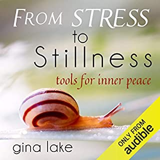 From Stress to Stillness     Tools for Inner Peace              By:                                                                                                                                 Gina Lake                               Narrated by:                                                                                                                                 Toni Orans                      Length: 8 hrs and 18 mins     3 ratings     Overall 4.7