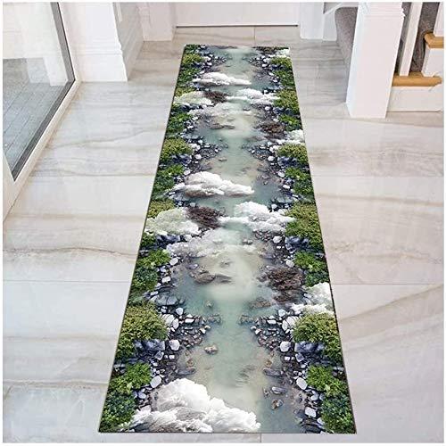 Pasillo muy largo corredor de tapetes, alfombras 3D de entrada perfecto for la entrada Puertas Puerta de entrada Corredor Cocina, antideslizante, lavable ( Color : Multi-colored , Size : 90x250cm )